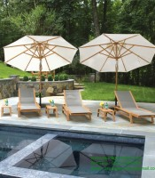 Sun Lounger Tropical Suwiming Pool Outdoor